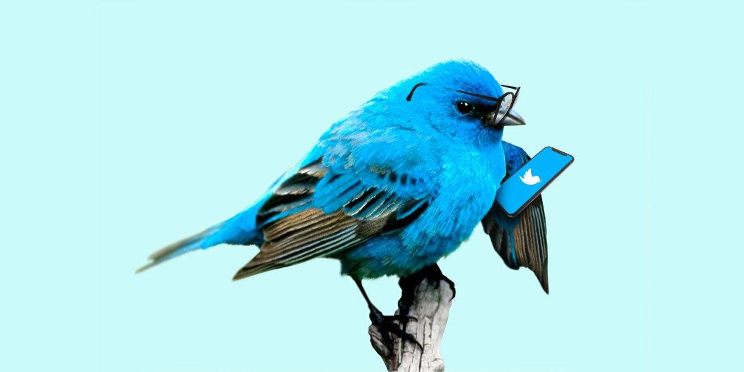 Neue Features für Direktnachrichten bei Twitter